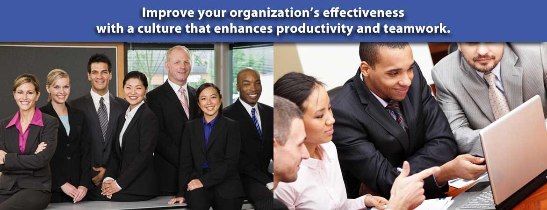 DeYoung Organizational Development