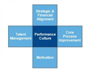 Performance culture diagram